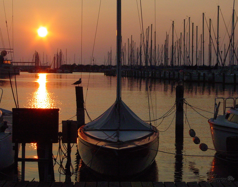 Lake Pontchartrain Marina at Day's End, New Orleans, LA by Bonnie Jaimes